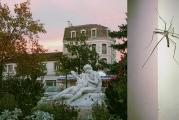 """Photographies © V.Champigny """"le baiser-araignée de Marmande"""" - juin 2001 - (40x27 sur papier baryté, contrecollé sur plaque de Dibond)"""
